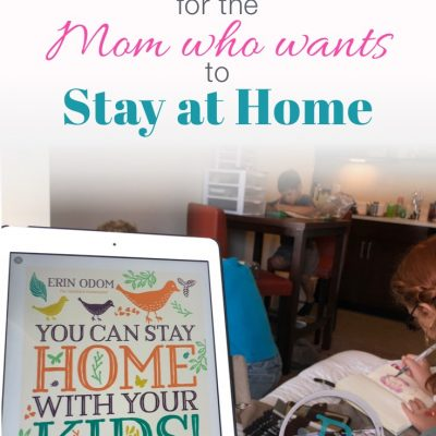 New Book for the Mom who wants to stay at home